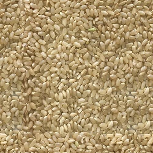糙米(圓米)(高雄145)